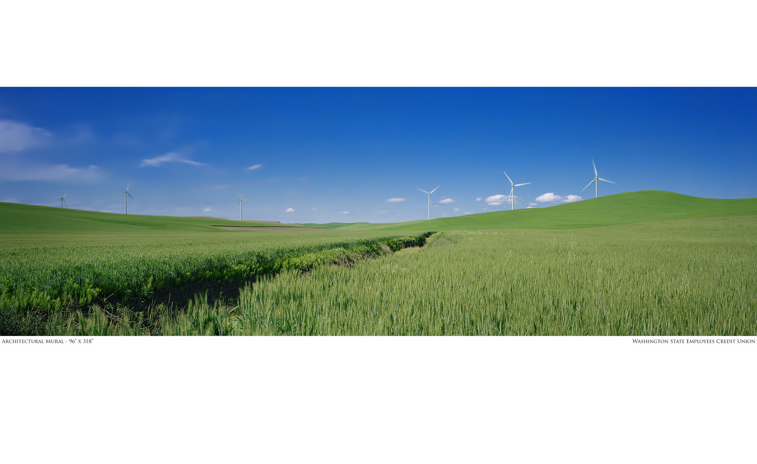 WSECU - Branch Mural - Palouse Wind Farm